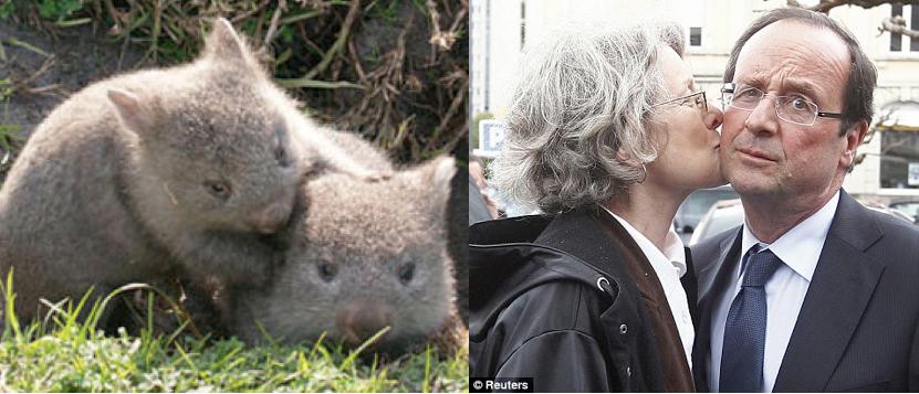 Wombats & François - Kiss